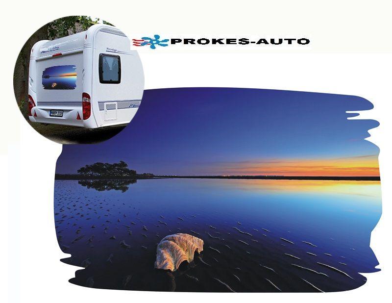 Car sticker SEASHELL PROKES-AUTO